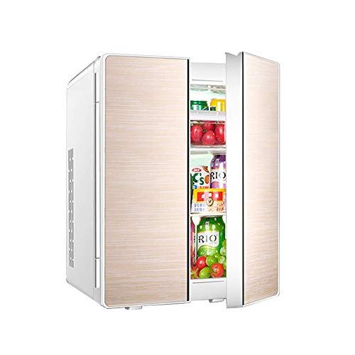 HUIQC Tragbarer Doppeltür-Kühlschrank mit Gefrierfach 25L Liter, Mini-Wechselstrom- oder Gleichstrom-Kühlboxen, Getränke, Wein-Camping, Reisen, Picknicks, kompakt (Farbe : Gold, größe : Style A)