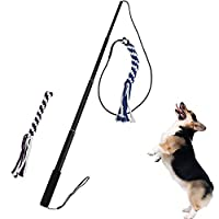 Beautiful Pine Flirt Pole Rope Tug Chien Jouet Bâton Rétractable Cat Teaser Training Play Baguette Pet Teaser et Outil Gymnastique pour Animaux Domestiques
