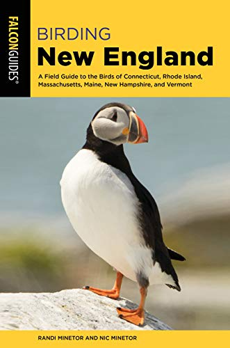 Birding New England: A Field Guide to the Birds of Connecticut, Rhode Island, Massachusetts, Maine, New Hampshire, and Vermont (Birding Series) (English Edition)