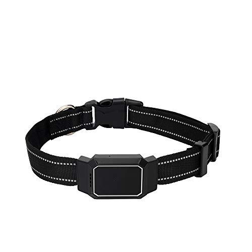 Collares Tractive GPS Tracker para Perros Y Gatos - Accesorio Buscador De...