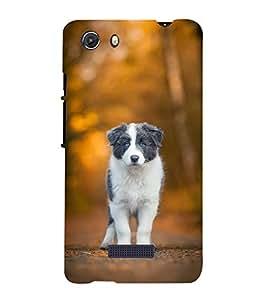 FUSON Puppy Love Dog 3D Hard Polycarbonate Designer Back Case Cover for Micromax Unite 3 Q372 :: Micromax Q372 Unite 3