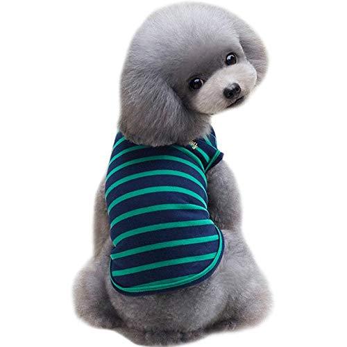 LXLLXL Hundebekleidung Frühjahr/Sommer Weste Teddy Kleiner Hund Welpe Als Bär Sommerkleid Dünnes Haustier Zwei Fuß Kleidung
