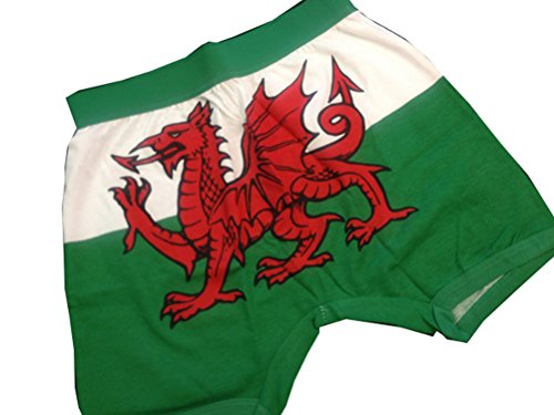 Welsh Flag Boxer...