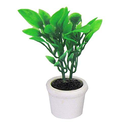 Trifycore Puppenstuben Mini Künstliche Bonsai Pot 12.01 Puppenhaus Miniatur-Garten-Accessoires grüne Pflanze in einem weißen Topf (Puppenhaus Miniatur-pflanzen)