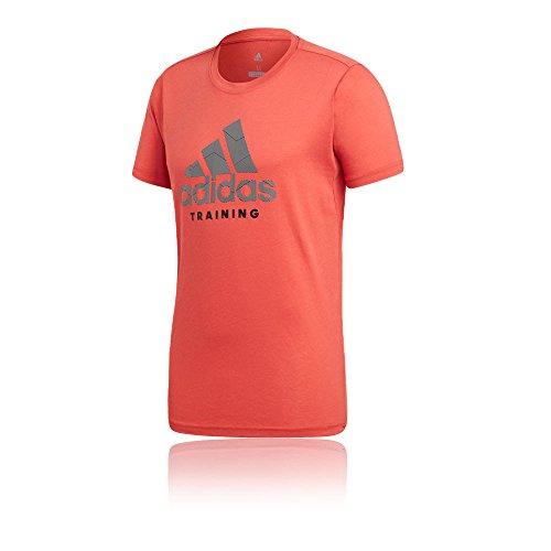 adidas Herren Training T-Shirt, Trace Scarlet, S Preisvergleich