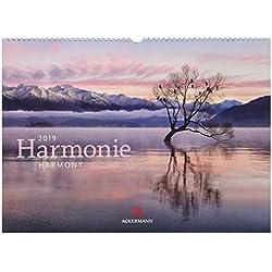 Harmonie 2019, Wandkalender im Querformat (45x33 cm) - Inspirationskalender / Naturkalender mit Monatskalendarium