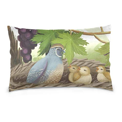 Check-standard Pillow Sham (Decorative Pillowcase Delicious Piece Apple Cushion Cover with Various Style for Bedroom 20x30 Pillow sham)