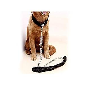 Bestes Geschenk für Ihre Haustiere: Es kann Ihre Haustiere gut ankleiden und Ihre Haustiere werden die Aufmerksamkeit der Menschen auf sich ziehen, wenn Ihre Haustiere es haben.