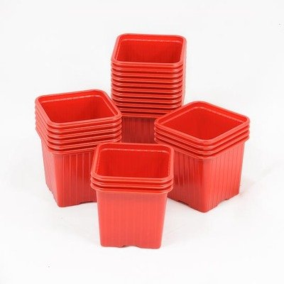 GODETS 7x7x6.4 thermoformé ROUGE (x 50)