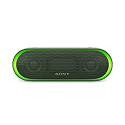 Sony SRS-XB20/GC IN Portable Bluetooth Speakers (Green)