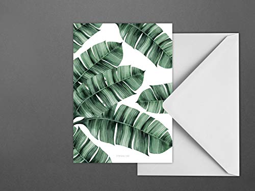 Postkarte/Tropical No. 8 -