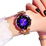 Reloj de Pulsera para Mujer, de Lujo, con Correa de Malla Impermeable, Elegante, analógico, de Cuarzo, con Correa magnética de Acero Fino, para niñas