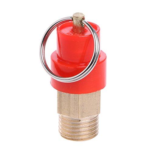BIlinli Rilascio di Rilascio della Pressione della valvola di Sicurezza del compressore dAria del Rilascio del Rilascio del compressore dAria Bunch da 1//4da 8