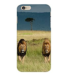 ColourCraft Lion and Lioness Design Back Case Cover for APPLE IPHONE 6 PLUS