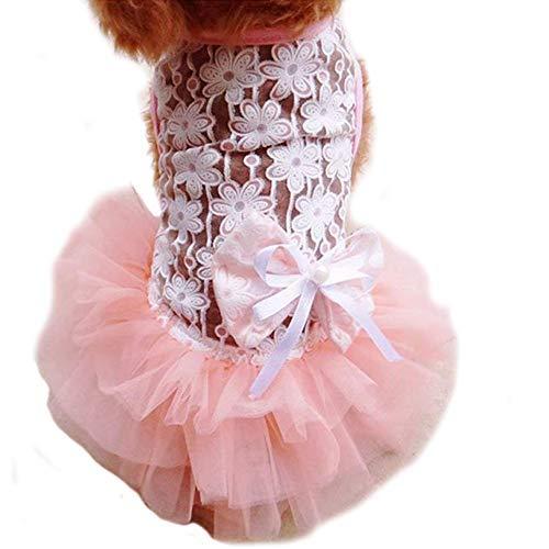 WORDERFUL Hund Hochzeit Kleid Sommer Hund Spitze Hochzeit Kleid Pet Cute Bubble Rock Formelle Kleidung für Puppy Kleine Hunde, XL, - Bubble Puppy Kostüm