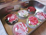 Magnete Kühlschrankmagnete Blumen Rose Kamelie Rot Rosa Weiß