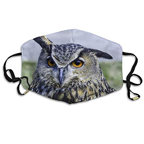 Masken,Masken für Erwachsene,Anti Pollution Mask Eurasian Owl Printed Mask Neutral Mask For Allergens,Exhaust Gas,Running,Cycling,Outdoor Activities