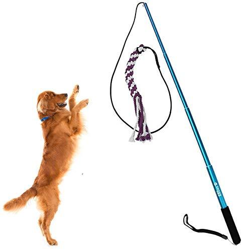 Faneli Spielzeug für Hunde ausziehbare Stange mit Seil Trainingsgerät für Haustiere, mit Seil Hundeangel Pole Haustier Teaser Größe S (Blau) (Seile Und Stangen)