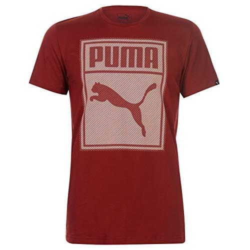 Puma Herren Box QT T Shirt Rundhals Kurzarm Baumwolle (Festival Roten T-shirt)