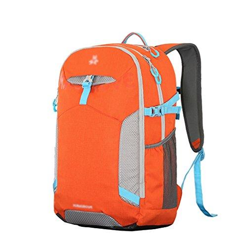 HWLXBB Outdoor Bergsteigen Tasche Männer und Frauen 30L Wasserdichte Mehrzweck-Bergsteigen Tasche Wandern Camping Bergsteigen Freizeit Rucksack Rucksack 4*