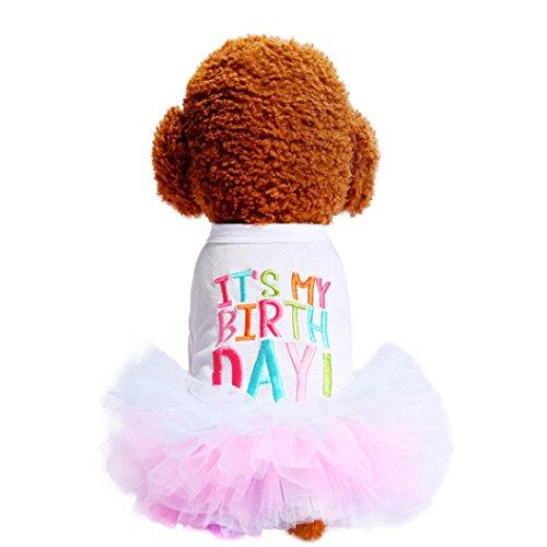 (Artistic9 Kleid Sommer-T-Shirt, niedliche Ballett-Rock, Tutu-Kleid, Hunde-Kostüm für kleine Hunde)