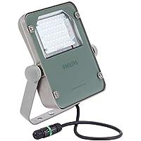 Philips Coreline 38W LED Alluminio, Grigio Proiettore–proiettori, 38W, LED, Alluminio, Grigio, LED, Bianco neutro, 4000K - Trova i prezzi più bassi su tvhomecinemaprezzi.eu