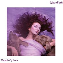 Hounds Of Love (2018 Remaster) [VINYL]