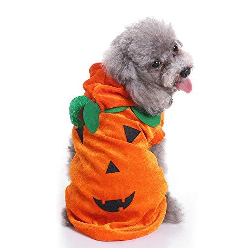 Bulz Kostüm für Hunde und Katzen, Halloween, Kürbis-Kostüm, Haustier-Kostüm, Warmer Kapuzen-Kapuzen-Kostüm, für Herbst und Winter (Katze Kostüm Für Thanksgiving)