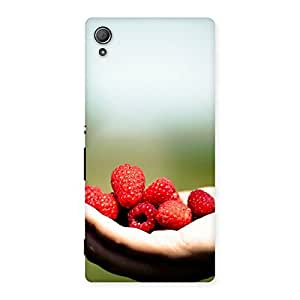 Neo World Beautiful Berries Back Case Cover for Xperia Z4