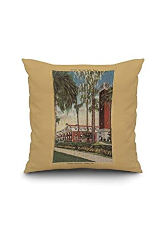 Deland, Florida - View of Stetson University (20x20 Spun Polyester Pillow Case, White Border)