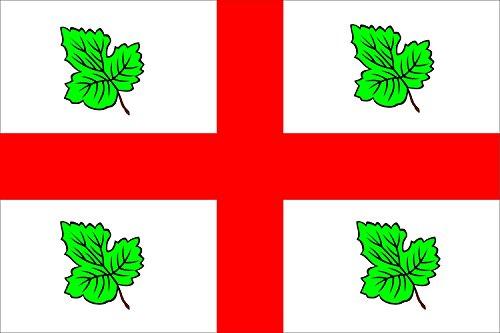 magFlags Bandera Large Casaseca de las Chanas | bandera paisaje | 1.35m² | 90x150cm