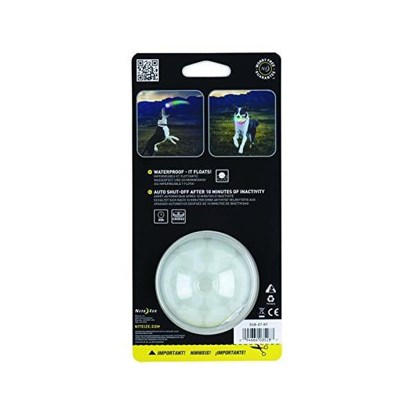 Nite Ize GlowStreak LED Dog Ball, Bounce-Activated Light Up Dog Ball 1