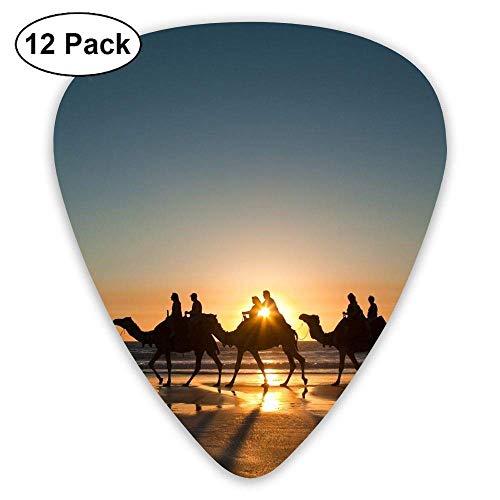Sunset Camel Caravan Classic Guitar Pick (12 Pack) for Electric Guita Bass