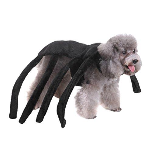 Yuncai Lustige Halloween Haustier Hund Kleidung Weihnachts-Clown Kürbis Spinne Hexe Verkleiden Sich Party Kostüm Cosplay für Katze Als Bild L (Machen Hexe Kostüm)