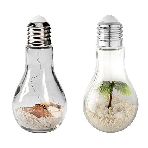 Mojawo 2er Set LED Glühbirne Deko Lampe Glas Sparlampe Muscheln + Palme zum aufstellen oder hängen kabellos Ø 9 cm H18,5 cm