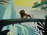 Fitzibiz Der König der Löwen Jersey, Panel,