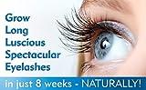 DERMAWORKS Spectaculash Eyelash Growth Serum, Rapid Lash Growth Serum, Eyelash Enhancer. Lash Conditioner
