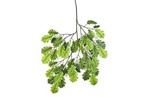 artplants Set 'Künstlicher Eichenblattzweig + Gratis UV Schutz Spray' - Künstliche Eichenblätter EMILIAN, schwer entflammbar, grün, 55 cm