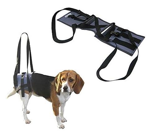 Harnais de maintien Handy Canis Baudrier pour chiens avec graves problèmes aux pattes arrières, Large (68 cm circonferenza fascia)