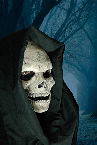 Mit Pinsel Tod Ein Dem Kostüm - CREATIVE ProthesenAbzieher-Face Maske Skull 2Teil