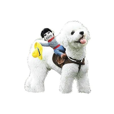 DSstyles Haustier Kostüm Reiter mit Stier Mütze für kleine Hunde oder Katze