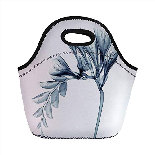 Portable Bento Lunch Bag,Xray Flower,X ray Transparent Illustration of a Flower Blossom Artful Unique Minimalistic Art,Teal White,for Kids Adult Thermal Insulated Tote Bags