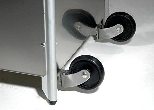 Heizstrahler Traedgard® Design Vesuvio Activa Cheops, mit Rollenset, Gastroset und SCHOTT Glasröhre - 2