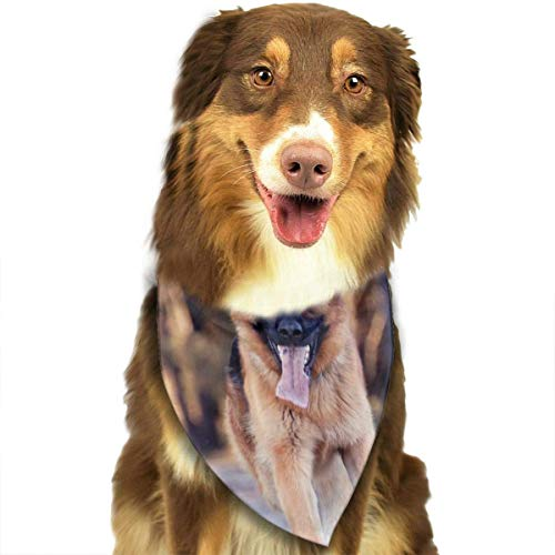 dfegyfr German Shepherd Dog Pet Scarf/Fit Scarfs