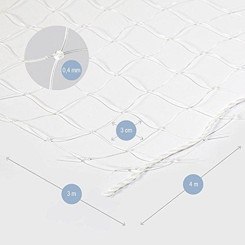 Bella & Balu Katzennetz inkl. Haken, Dübel, Rundumseil und Anleitung zur Befestigung – Transparentes Schutznetz für Katzen zur Absicherung von Balkon, Terrasse, Fenster und Türen ( transparent| 4 x 3 m) - 3