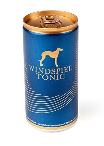 Windspiel Genusspaket Prmium Dry Gin (1 x 0,5l) + Windspiel Tonic Water (6 x 0,2l)