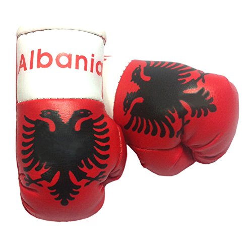 Doktor Hardstuff Mini Boxhandschuhe - Albanien