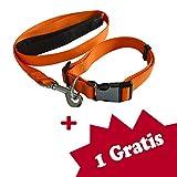Tamia Living 2er Set verstellbares Hundehalsband + Hundeleine Halsband Leine aus Nylon mit Klickverschluss (G1018 orange)