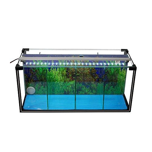 Komplettset Aquarium Zucht-Becken