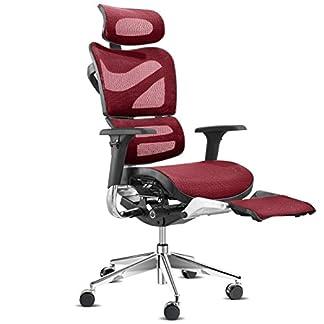 Diablo V-Master silla de oficina ergonómica, silla de confort, asiento ajustable, reposacabezas, reposabrazos ajustables, reposapiés ajustable, malla de alta calidad, ajuste de altura, opción de color